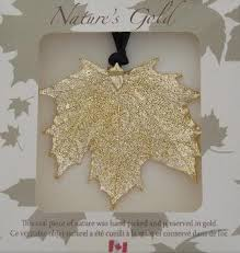 natures gold gold fill maple leaf