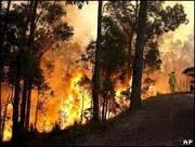 Incêndios florestais atingem oeste da Austrália