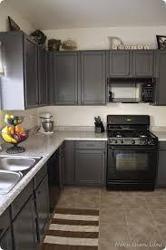 Benjamin Moore Gray Cabinets Kitchen Best Grey Colors For Kitchen Cabinets Grey Kitchen