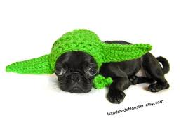 Dog Halloween Costumes 268 Halloween Costumes Puppies Dogs Images