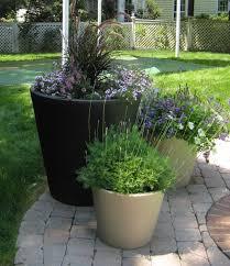home decor container garden ideas cheap for garden ideas