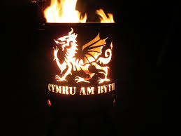 Dragon Fire Pit by Fire Pits