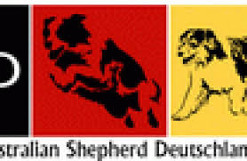 australian shepherd zucht deutschland mitgliedsverein club für australian shepherd deutschland e v