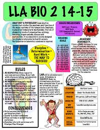 Anatomy And Physiology Coloring Workbook Chapter 16 Answer Key Anatomy Lewissci