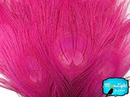 moonlight feathers moonlight feather peacock feathers hot pink