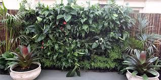 How To Build A Vertical Garden - how to build a vertical garden lifestyle home
