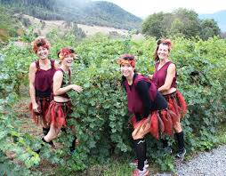 halloween city grants pass preview registration for the enchanted forest wine run in grants