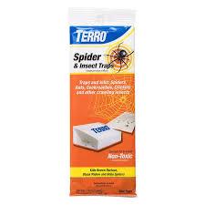 amazon com terro t3200 spider u0026 insect trap 4 traps not