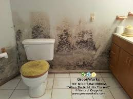 black mold smell in your home greenworks llc