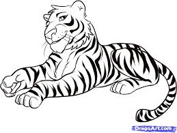 draw a tiger by drawing sheets added by august 23