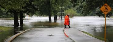 texas birds and bays u2013 hurricane harvey u0027s ecosystem impacts the