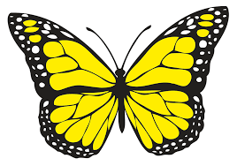 yellow butterfly remembering those that are but not forgotten