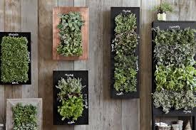chalkboard wall planters for vertical garden designs