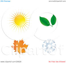 thanksgiving leaves clipart winter leaf clipart clipground