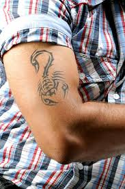 Scorpion On Forearm Meaning Scorpion And Scorpio Pictures Lovetoknow