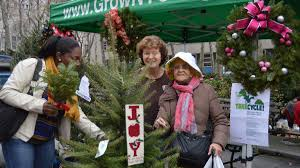 small farmers take root in competitive new york city christmas