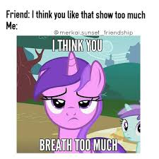 Best Mlp Memes - 4809 best my little pony images on pinterest ponies pony and my