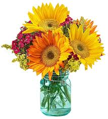Flowers Com Coupon 100 Flowers Free Shipping Code Amazon Com Fresh Flowers