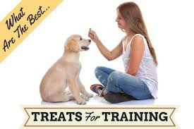 recipe for dog treats the best dog treats for puppies or dogs