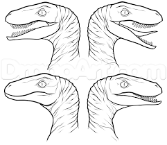 how to draw the raptor squad from jurassic world step 6 the
