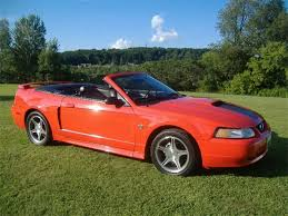 mustang for sale best 25 mustang cobra for sale ideas on cobra for