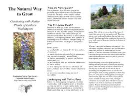 native plant species eastern wa native plants 2 by cbnps issuu