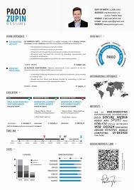 infographic resume template 50 new infographic resume template professional resume templates