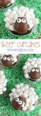 best 25 sheep cupcakes ideas on pinterest what do sheep eat