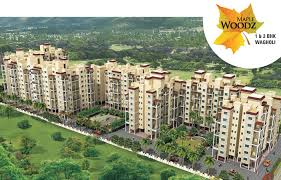 Obat Q Cef why to buy flats in wagholi pune shelter s real estate
