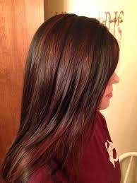 partial red highlights on dark brown hair best 25 brown hair red highlights ideas on pinterest brown hair