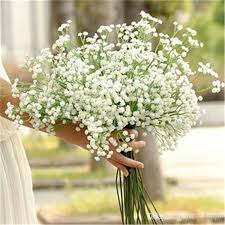 baby s breath flowers flowers all the sky simulation flower flower with flower