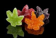edibles coupons meds coupons denver co cannasaver