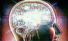Brain Meme Generator - 10 images of blurry brain template canbum net