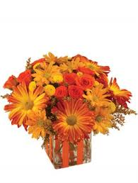 flower delivery rochester ny bonfire nights bouquet in rochester ny personal designs florist