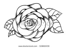 flower vector roses and love vector