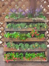 pallet herb garden photos