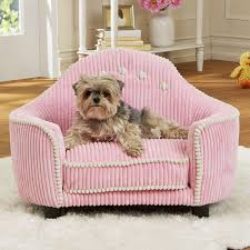 Corduroy Sofa Bed 251 Best Mamas Awesome Pet Furniture And Bedding Images On