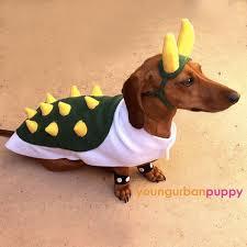 Weiner Dog Halloween Costumes 17 Dachshund Costume Images Dachshund Costume