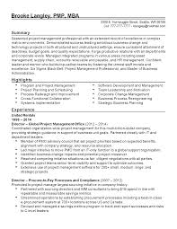 project management experience resume professional global project manager templates to showcase your