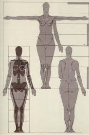 Female Anatomy Figure 54 Best Reference Female Anatomy Images On Pinterest Drawing