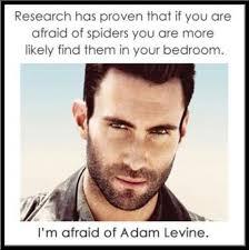 Adam Levine Meme - adam levine adam levine pinterest adam levine