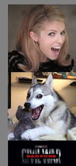 Pun Dog Meme - anna kendrick vs bad pun dog blank template imgflip