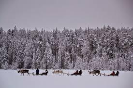 Price Of Rides At Winter Korvalan Kestikievari Reindeer Safaris