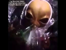 Stoned Alien Meme - alien smoking weed dope video youtube