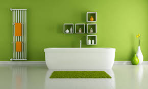 painted bathrooms ideas bathroom ideas maximize the bathroom