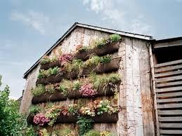 contemporary landscaping gardenabc com
