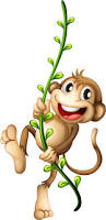 monkey png transparent free images png only