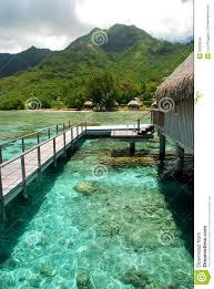 polynesian overwater bungalow moorea french polynesia royalty