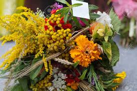 thanksgiving herbs beautiful bouquets of flowers and herbs stock photo picture and