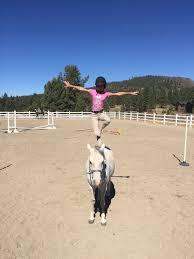 summer camps u2014 piping rock horses